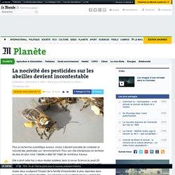 La nocivité des pesticides sur les abeilles prouvée