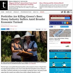 TRUTH OUT 02/08/15 Pesticides Are Killing Greece's Bees: Honey Industry Suffers Amid Broader Economic Turmoil