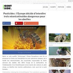 Pesticides : l'Europe décide d'interdire trois néonicotinoïdes dangereux pour les abeilles