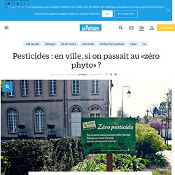 Pesticides : en ville, si on passait au «zéro phyto» ? - Le Parisien