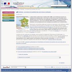 EAUFRANCE 18/07/17 Pesticides : une baisse de la pollution des cours d'eau en métropole