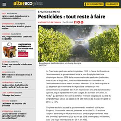 Pesticides : tout reste à faire