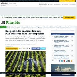 Des pesticides en doses toujours plus massives dans les campagnes