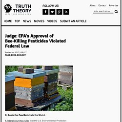 Judge: EPA's Approval of Bee-Killing Pesticides Violated Federal Law