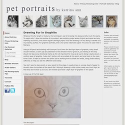 Pet Portraits - How to draw fur in graphite