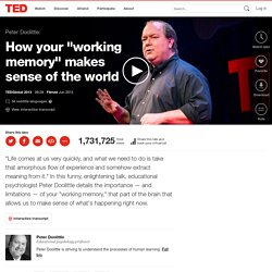 "Peter Doolittle: How your ""working memory"" makes sense of the world"