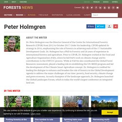Peter Holmgren, Author at CIFOR Forests News