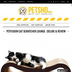 PetFusion Cat Scratcher Lounge – Deluxe & Review