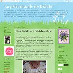 Châle dentelle au crochet/Lace shawl
