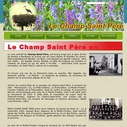 Une petite histoire de Champ saint Père