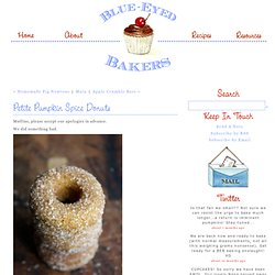 Petite Pumpkin Spice&Donuts - Blue-Eyed Bakers - Blue Eyed Bakers