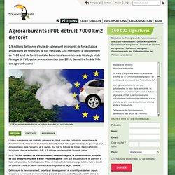 """""""Biocarburants"""": l'UE détruit 700.000 ha de forêt"""