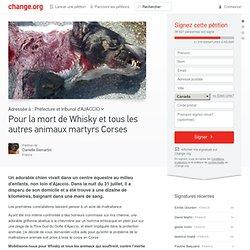 PETITION change.org Pr la mort de Whisky