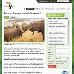 Sauvons les éléphants de Tanzanie