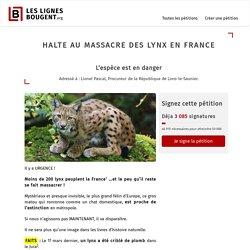 HALTE AU MASSACRE DES LYNX EN FRANCE