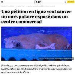 Une pétition en ligne veut sauver un ours polaire exposé dans un centre commercial