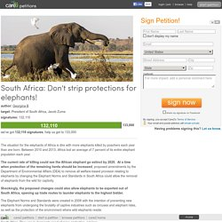 South Africa: Don't strip protections for elephants!