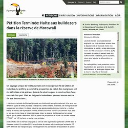 Halte aux bulldozers dans la réserve de Morowali