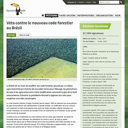 Véto contre le nouveau code forestier au Brésil