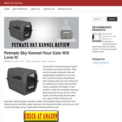 Petmate Sky Kennel-Your Cats Will Love It! - Best Cat Carriers