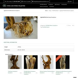 Agatized Petrified Wood Sculpture