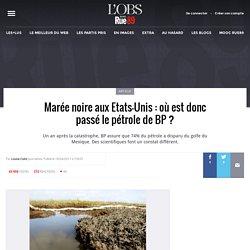 Marée noire aux Etats-Unis : où est donc passé le pétrole de BP ?