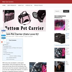 Pettom Pet Carrier (Cats Love It)! - Best Cat Carriers