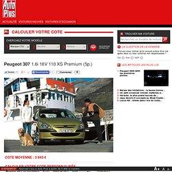 Peugeot 307 1.6i 16V 110 XS Premium (5p.) 04/2001, Fiche Technique - Cote automobile
