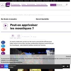 FRANCE CULTURE 30/06/16 DU GRAIN A MOUDRE - Peut-on apprivoiser les moustiques ?