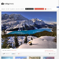 peyto lake, canada photo