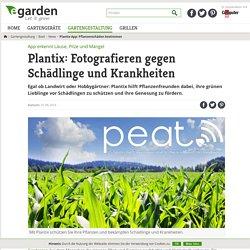 Plantix-App: Pflanzenschäden bestimmen