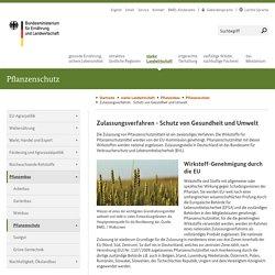 BMEL - Pflanzenschutz, Pflanzenschutzmittel, gute fachliche Praxis und rechtliche Regelungen - Zulassungsverfahren - Schutz von Gesundheit und Umwelt