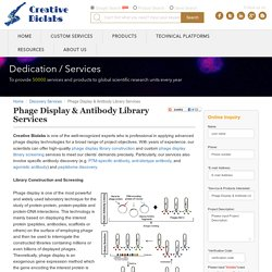 Phage Display and Antibody Library