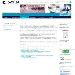 Camelot Management Consultants