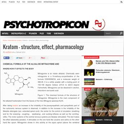 Kratom – structure, effect, pharmacology – Psychotropicon - Das Online-Magazin für Psychonauten