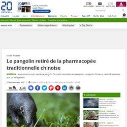 AFP 10/06/20 Le pangolin retiré de la pharmacopée traditionnelle chinoise