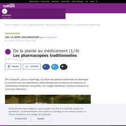 De la plante au médicament (1/4) : Les pharmacopées traditionnelles