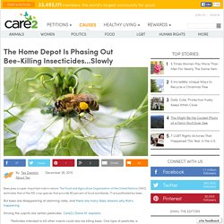 The Home Depot is Phasing Out Bee-Killing Insecticides...Slowly