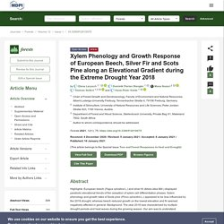 FORESTS 10/01/21 Xylem Phenology and Growth Response of European Beech, Silver Fir and Scots Pine along an Elevational Gradient during the Extreme Drought Year 2018