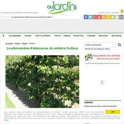 Le phénomène d'alternance de certains fruitiers