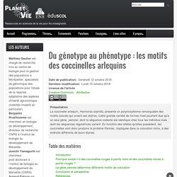 Du génotype au phénotype: les motifs des coccinelles arlequins