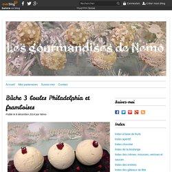 Bûche 3 boules Philadelphia et framboises - Les gourmandises de Némo