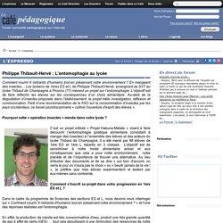 Philippe Thibault-Hervé : L'entomophagie au lycée