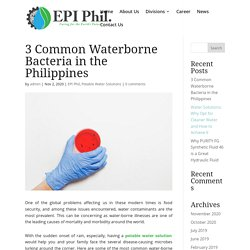 3 Common Waterborne Bacteria in the Philippines - Envireau Pacific Incorporated (EPI)