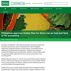 INTERNATIONAL RICE RESEARCH INSTITUTE 18/12/19 Philippines approves Golden Rice for direct use as food and feed, or for processing