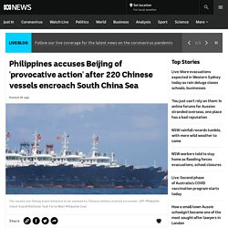 Philippines accuses Beijing of 'provocative action' after 220 Chinese vessels encroach South China Sea
