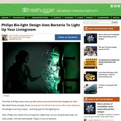 Philips Bio-light Design Uses Bacteria To Light Up Your Livingroom