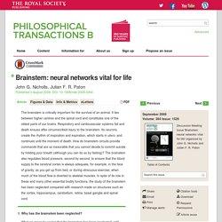 Brainstem: neural networks vital for life