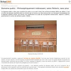 Domaine public : Philosophiquement intéressant, selon Pellerin, sans plus