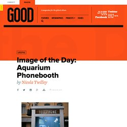 Image of the Day: Aquarium Phonebooth - Food - GOOD - StumbleUpon
